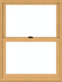 Double-Hung Window