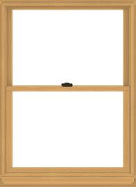 Andersen-Windows